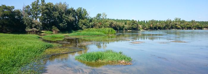 Orilla del río Ebro