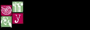Paleoymas