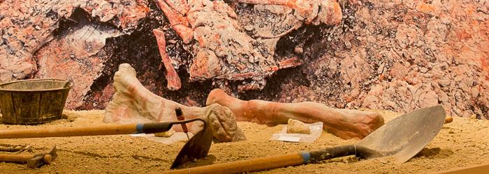 Tematización de una excavación paleontológica realizada para el Centro De Interpretación de Fuentes (Cuenca)