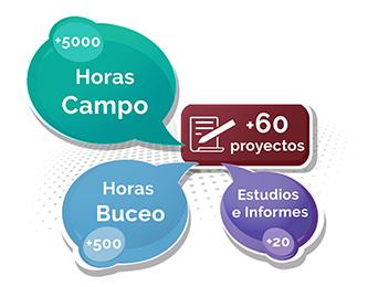 Paleoymás ha desarrollado más de 60 proyectos de gestión de moluscos