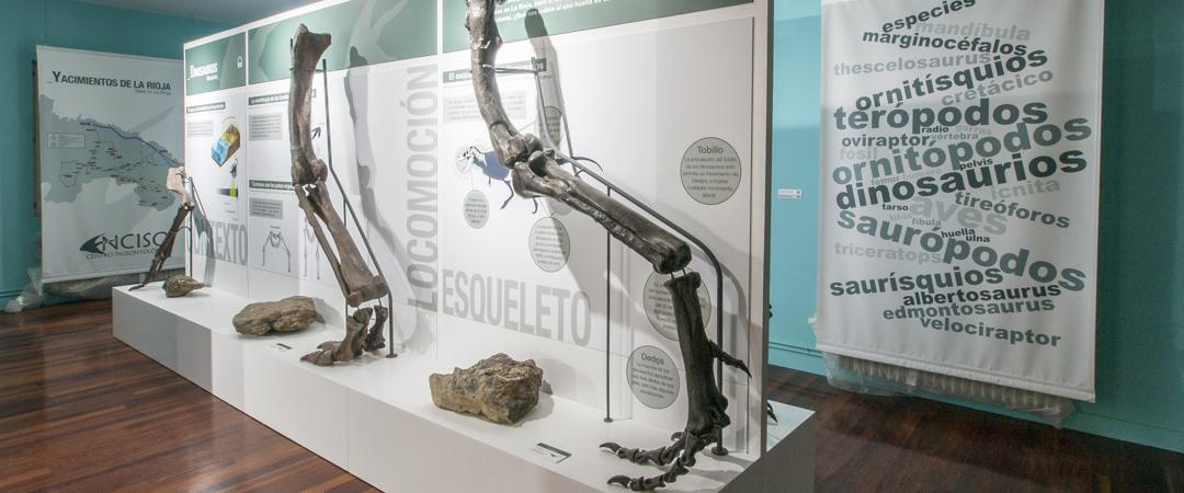 Centro Paleontológico de Enciso, La Rioja