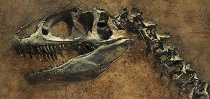 paleontologia en los colegios