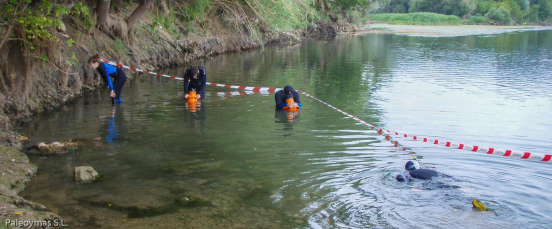 Prospecciones de caracol manzana por Paleoymas en el delta del Ebro