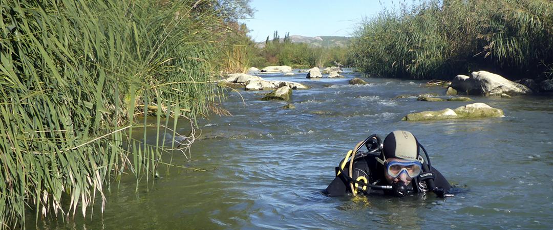 Prospección de náyades y estudio de sedimentos en el río Arga