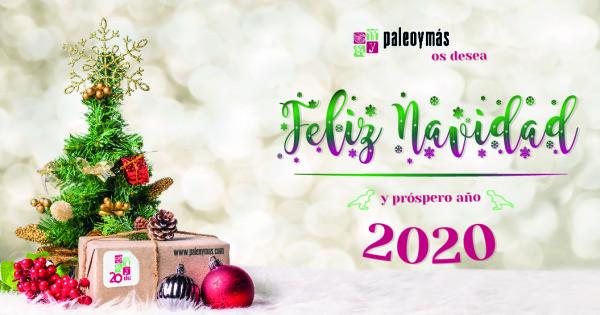 paleoymas consultoria y desarrollo cultural y medioambiental paleoymas os desea feliz navidad y prospero 2020 paleoymas os desea feliz navidad y