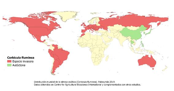 Distribución mundial de la almeja asiática. Paleoymás 2019. Datos obtenidos en CABI y complementados con otros estudios.