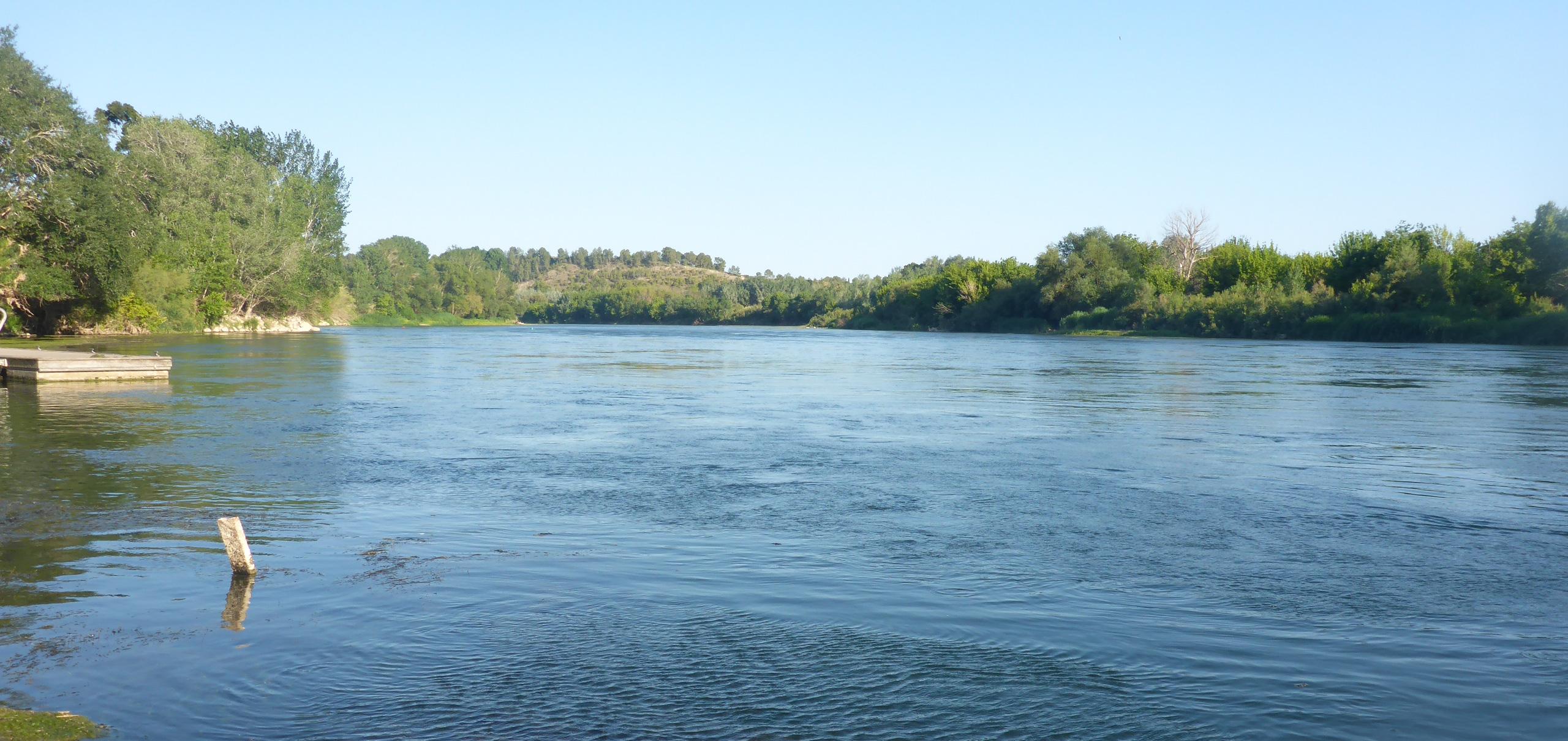 Río Ebro a su paso por Miravet (Tarragona). Ecosistema ocupado por la almeja asiática.