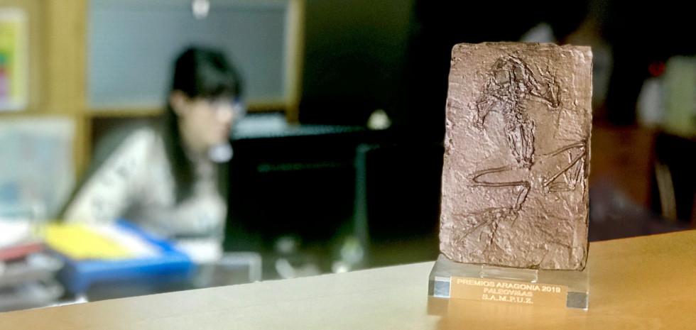 Premio_MODIF
