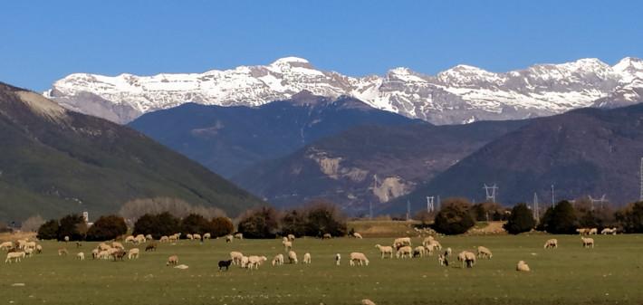 Vista de la cordillera de los Pirineos desde Sabiñánigo