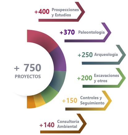 Infografia consultoria-01