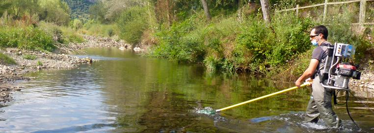 3.3 Servicio Pesca electrica (700x250) (1)
